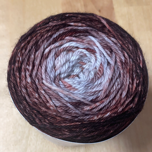 Speckled Gradient; Miguel Worsted Yarn