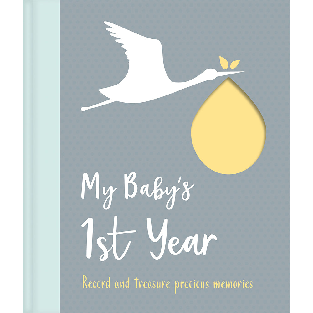 My Baby's First Year Book (Igloo books) - Little Fawn Box - Subscription box for mum and baby
