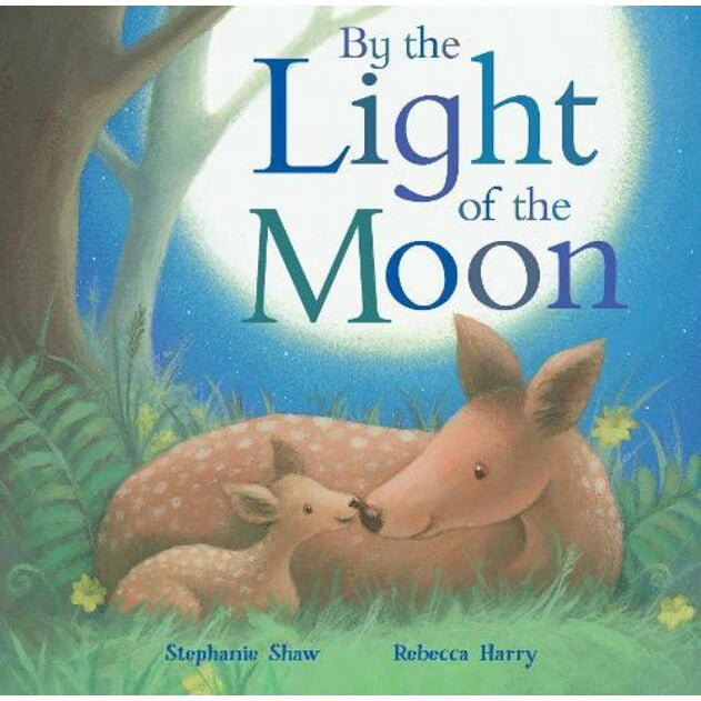By The Light of The Moon Board Book - Little Fawn Box