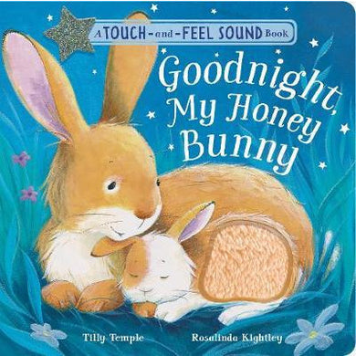 Goodnight My Honey Bunny - A Touch & Feel Sound Book - Little Fawn Box - Subscription box for mum and baby