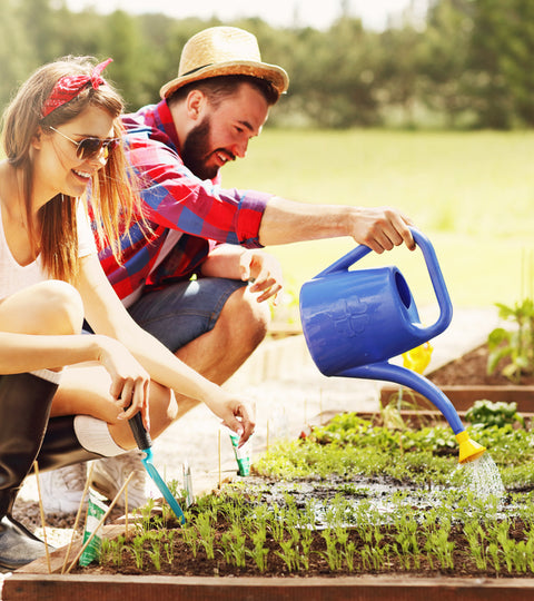 couple planting an herb garden