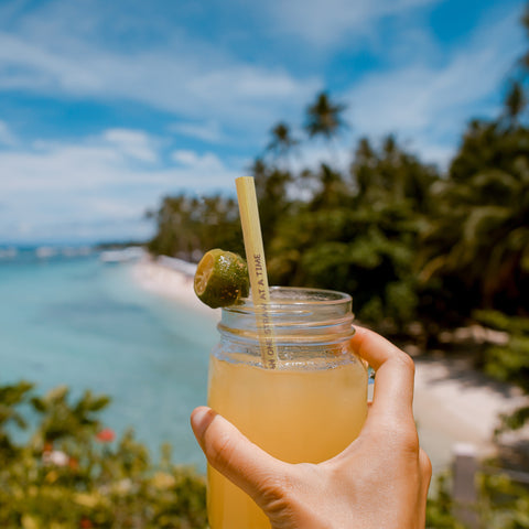 reusable-drinking-bamboo-straws-sustainable-biodegradable|Cestash