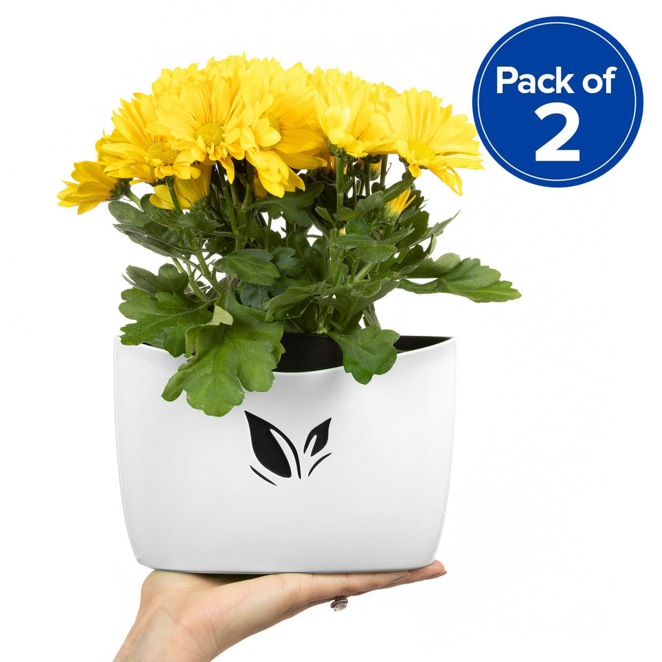 Pack of 2 Cestash Wall Hanging Planter Pots (White)