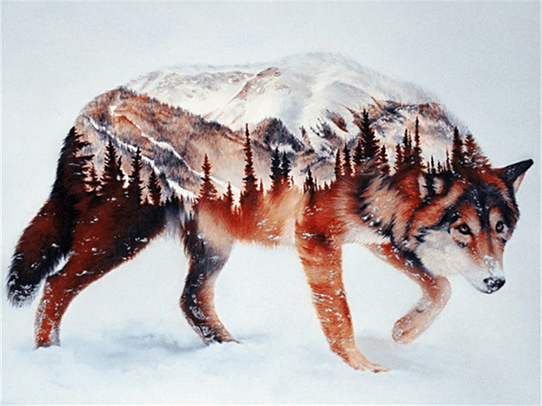 Wolf and Forest Composition Paint By Number Kit