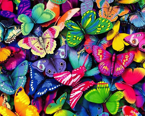 Colorful Butterflies Paint By Number Kit