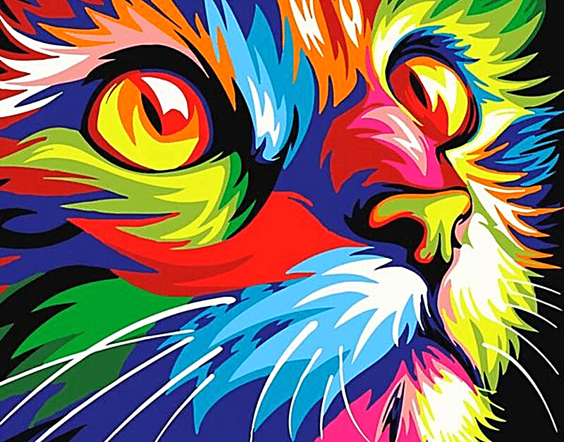 Paint by Numbers Kit Colorful Cat - Just Paint by Number
