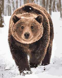 Snow Bear Paint By Numbers Kit