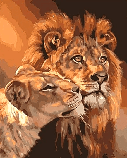 Lions together Paint By Number Kit