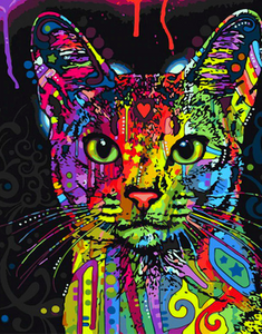 Paint by Numbers Kit Colorful Abstract Cat