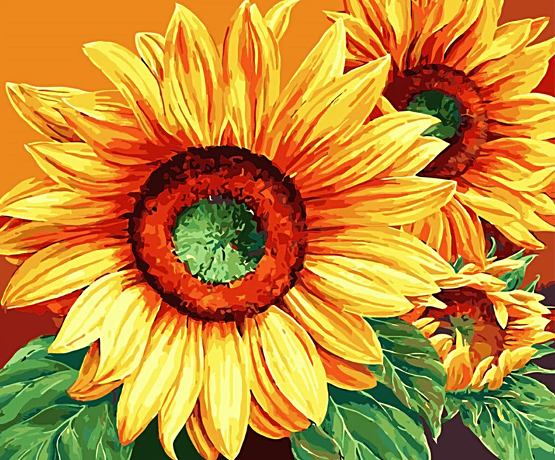 Paint by Numbers Kit Flower Sunflower