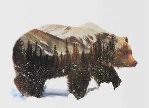 Bear and Forest Composition Paint By Number Kit