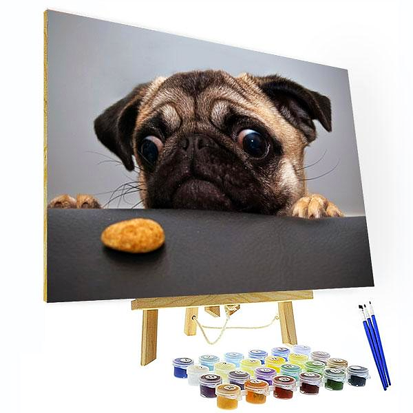 Paint by Numbers Kit Pug