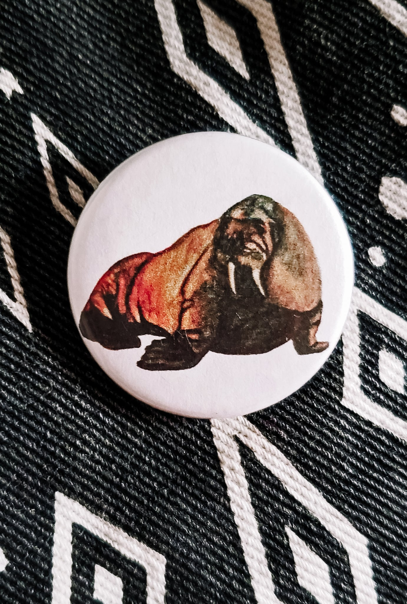 W is for Walrus Button Pin