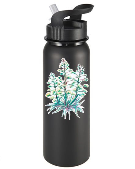 Arizona Christmas Trees Vinyl Sticker/Decal