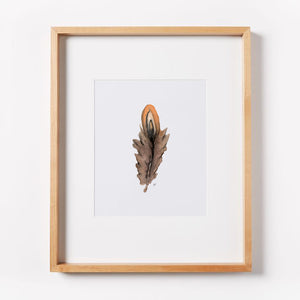 Brown Feather Print