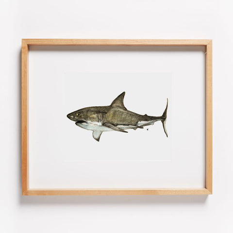 Great White Shark Print