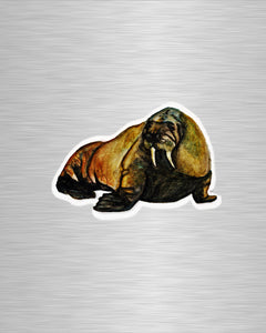 Walrus Vinyl Sticker/Decal