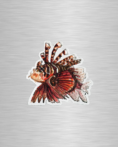 Zebra/Tiger Fish Vinyl Sticker/Decal