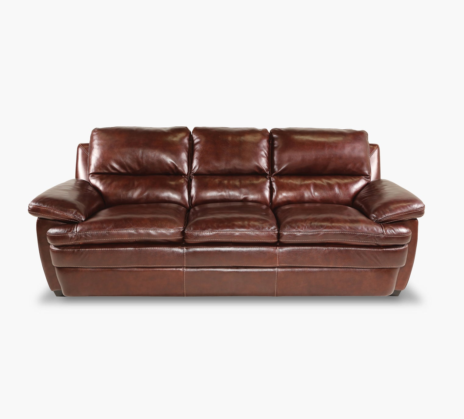 Tamarindo Leather Sofa