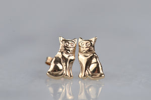 Golden Kitten Studs