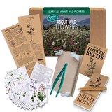 Wild Flowers Nature Kit