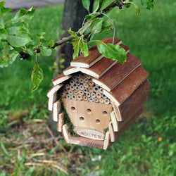 Wooden Insect and  Bee Hotel