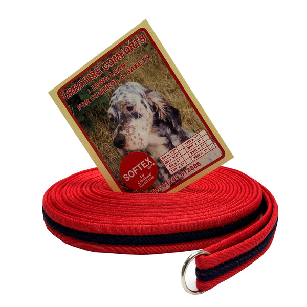 30ft Training Lead - Softex
