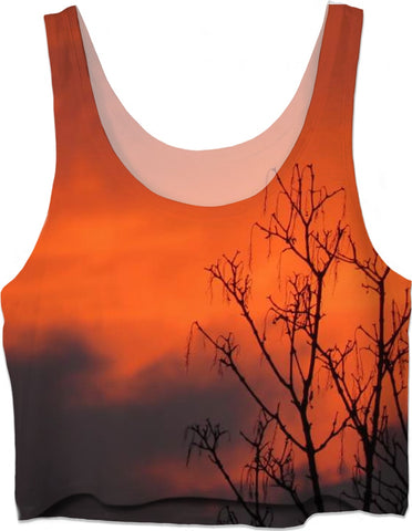 MADE WITH LOVE _ photo By artist ENymART ( Switzerland ) RED SKY Crop Top - Soul of The Gypsies