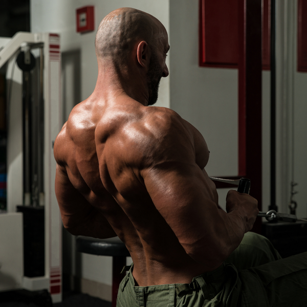 HOW TO BUILD BETTER LATS, AND BACK MUSCLES