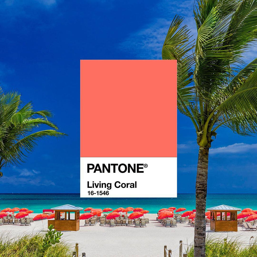 Pantone's Color of the year (2019)