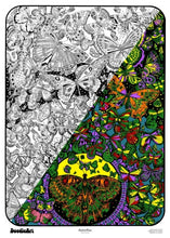 Load image into Gallery viewer, Butterflies Doodle Art POSTER KIT (24 x 34 inch)