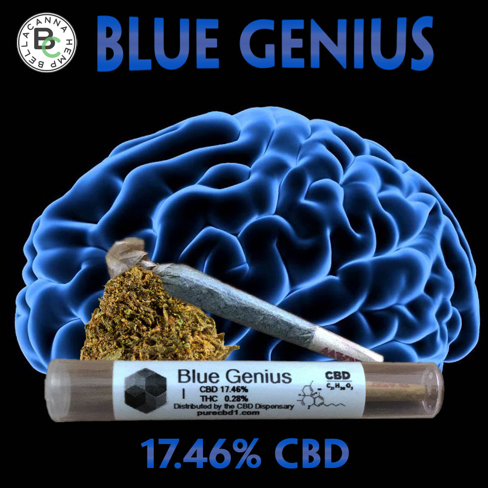 Blue genius hemp pre-roll
