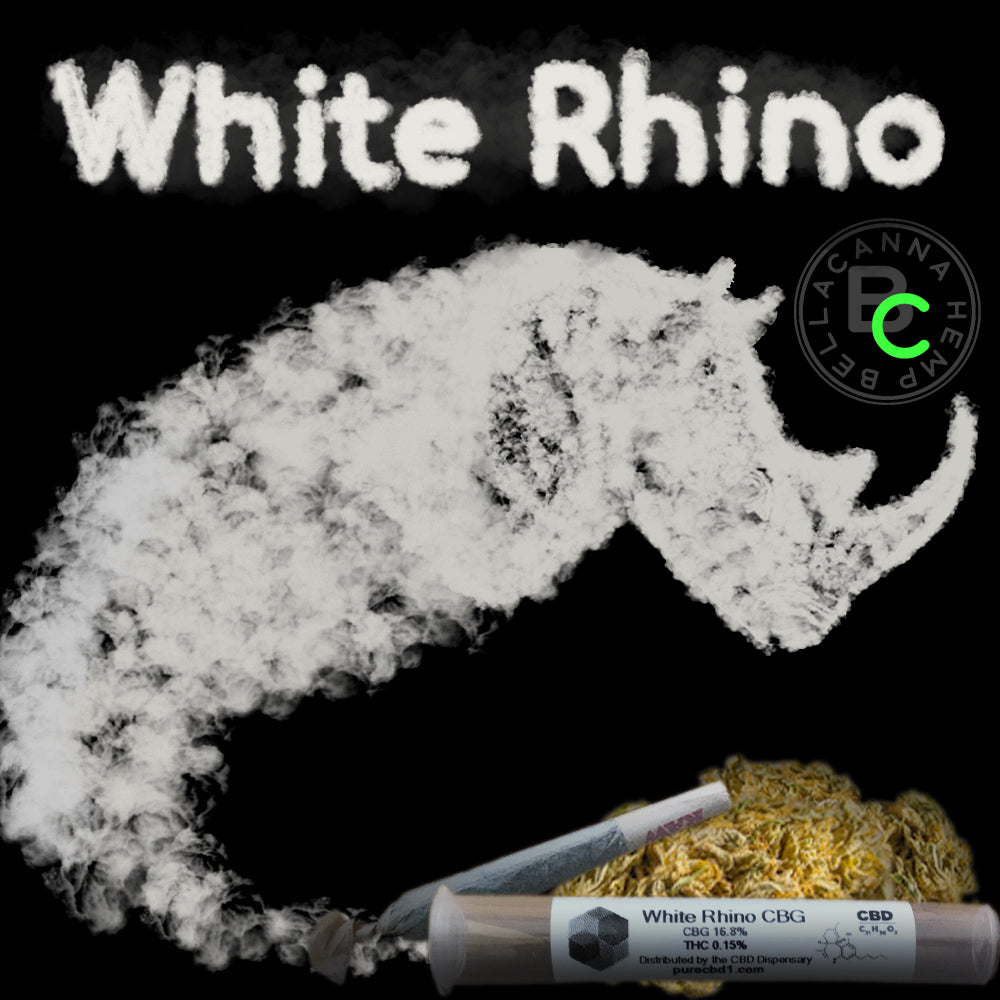 white rhino cbg hemp flower bella canna