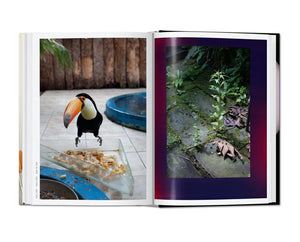 Wolfgang Tillmans. Four books (40th Anniversary Edition)