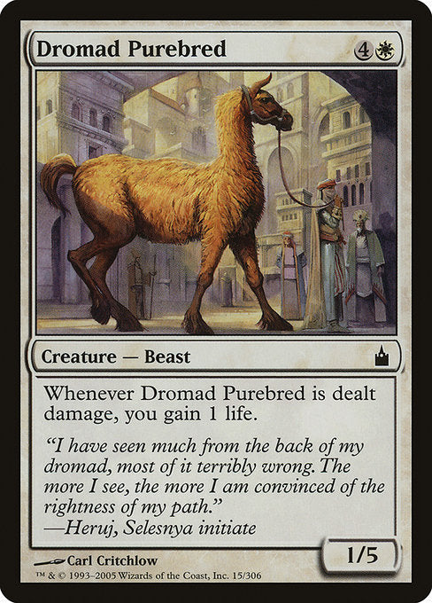 Dromad Purebred [Ravnica: City of Guilds] | Emerald Dragon Games