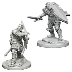 D&D Nolzur`s Miniatures: W3 Human Male Paladin | Emerald Dragon Games