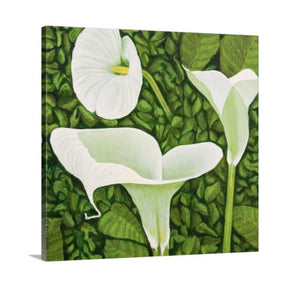 A side view of a painting of a trio of calla lilies in a green garden background