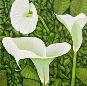 An oil  painting of a trio of calla lilies in a green garden background