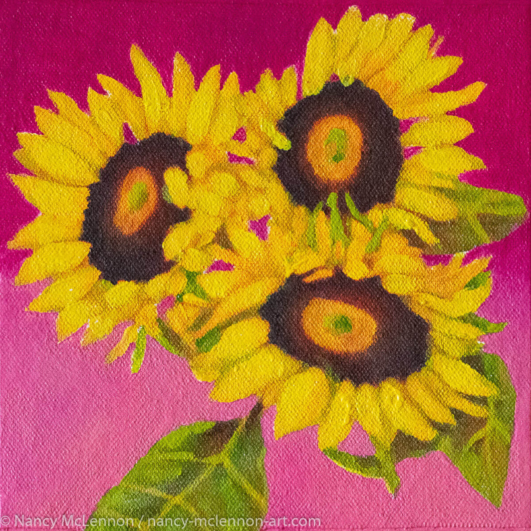 Original Oil Painting  -  Trio of sunflowers and leaves on a fuschia pink background  -  6