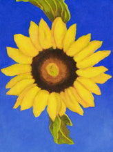 "Load image into Gallery viewer, Original Oil painting  -  Single sunflower on an ultramarine blue background  -  6""H x 8""W x 1-1/2""D"
