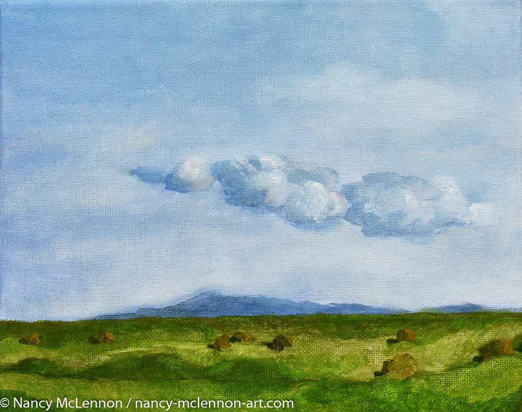 Original Oil Painting - Sonoma farm flats with clouds - 8
