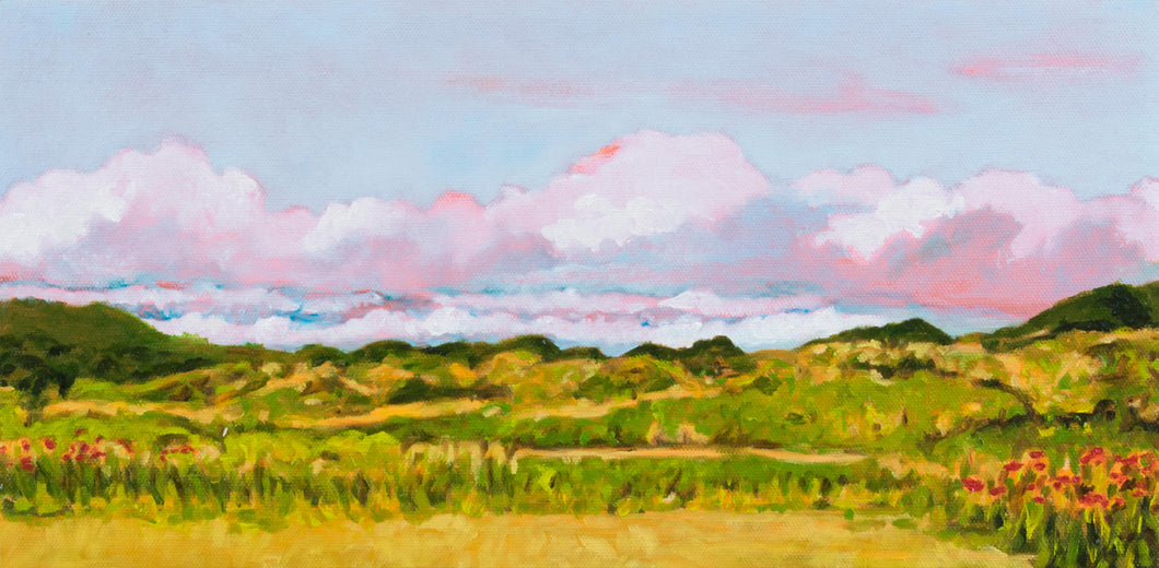 Original Oil Painting - April clouds in Novato, CA - 8