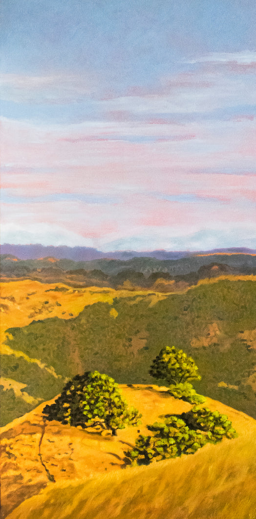 Original Oil Painting  -  Cal's Delight, Lucas Valley California  -  24