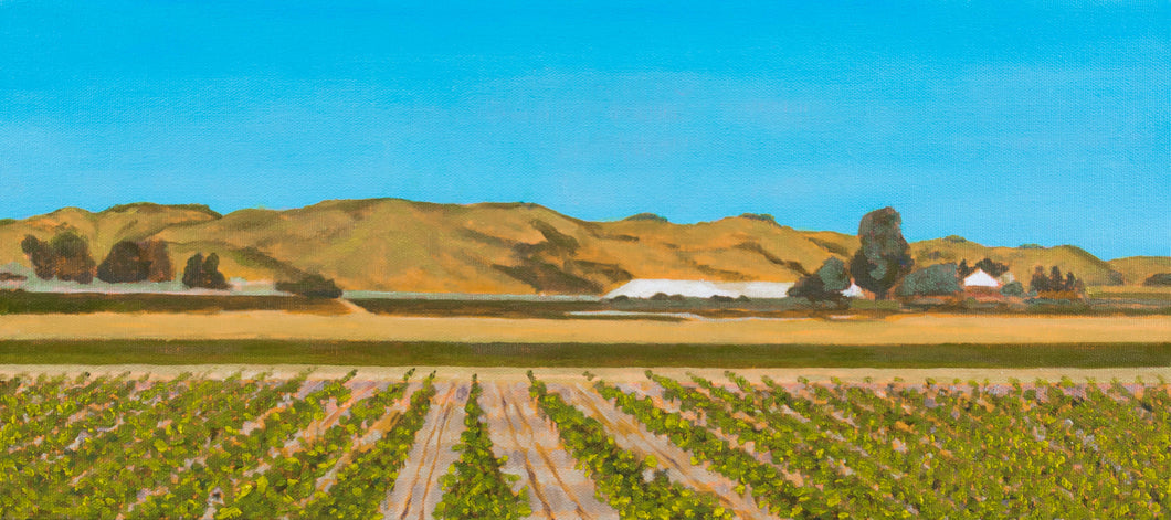 Original Oil Painting - Sonoma vines - 8