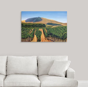 A painting of green and golden, sunlit vineyard hillsides of Napa Valley, California in the fall hanging on a white wall over a white couch