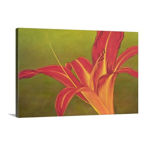 A side view of a painting by fine artist Nancy McLennon, of a single Ruby Spider day lily on green background