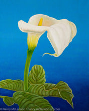 Load image into Gallery viewer, A painting, by fine artist Nancy McLennon, of a single White calla lily on blue background