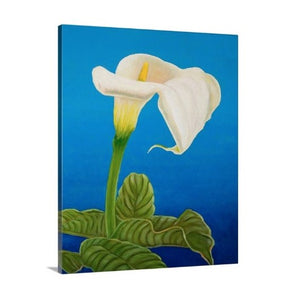 A side view of a painting by fine artist Nancy McLennon, of a single White calla lily on blue background