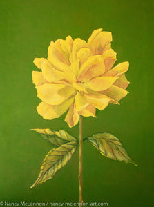 A painting, by fine artist Nancy McLennon, of a single a yellow rose on green background