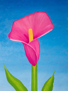 A painting, by fine artist Nancy McLennon, of a single Rosy pink lily on sky blue background